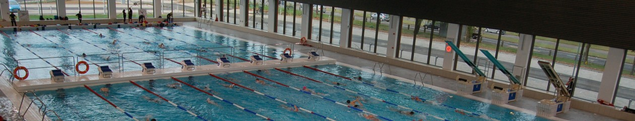 Team Luton Swimming